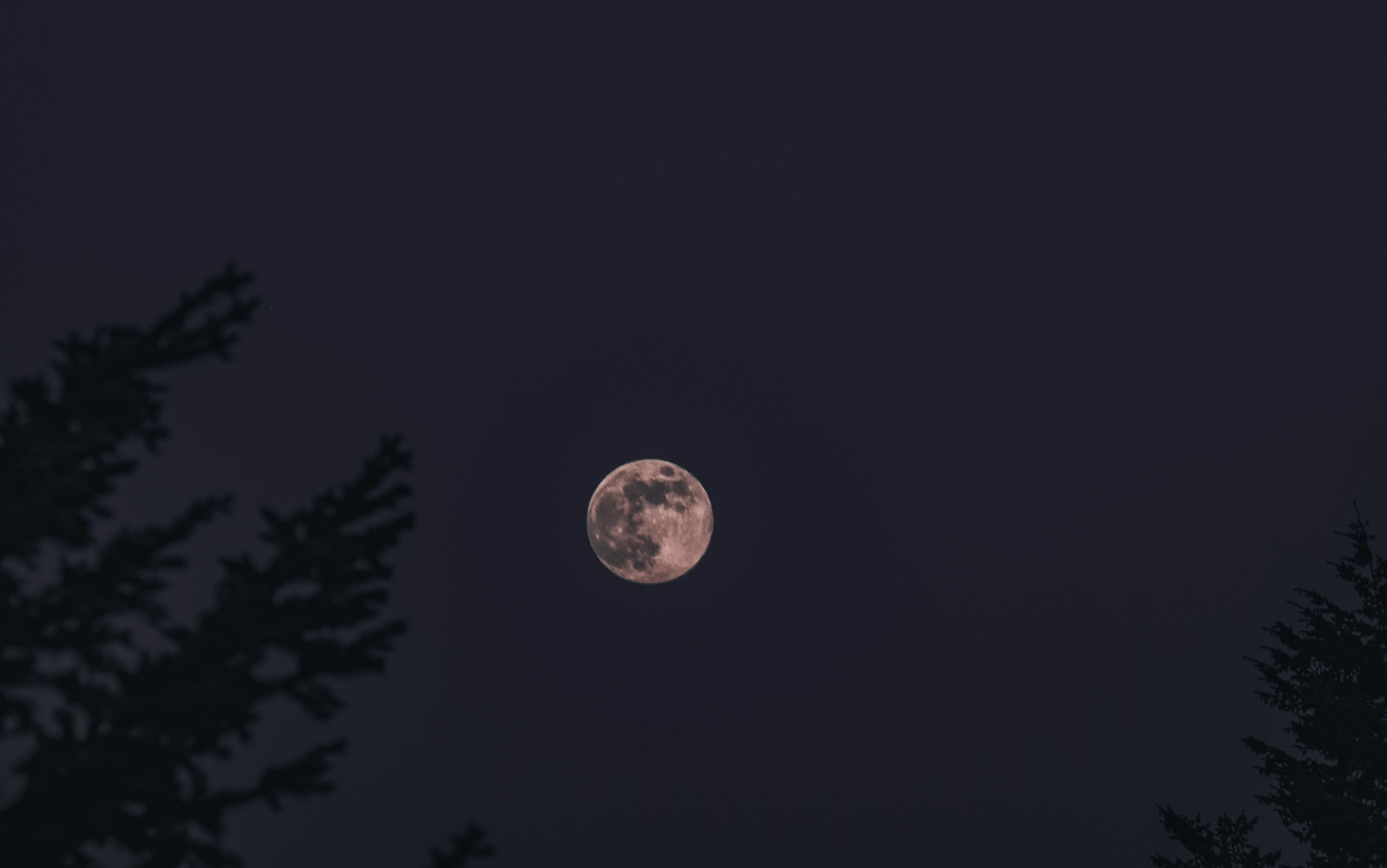 harvest-moon-in-night-sky_4460x4460