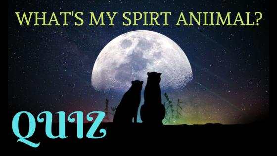 QUIZ ~ What's my spiritanimal?