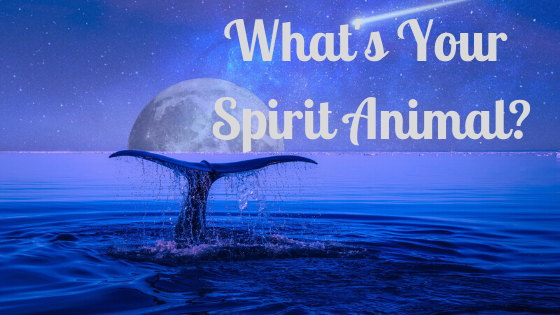 What's Your Spirit Animal?