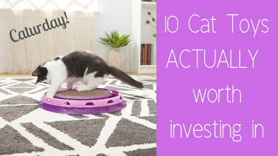Caturday ~ 10 cat toys actually worth investing in