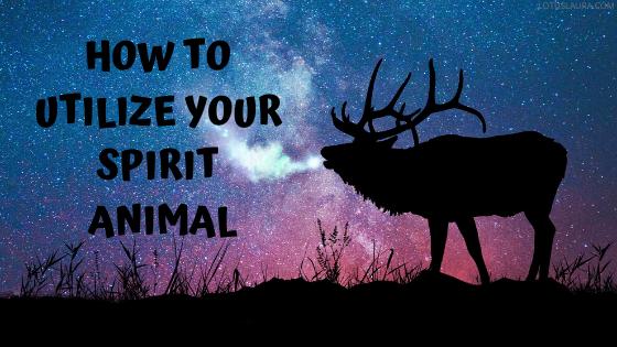 How to utilize your spiritanimal