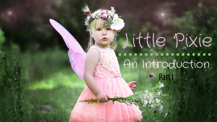 Little Pixie ~ An Introduction (Part I)