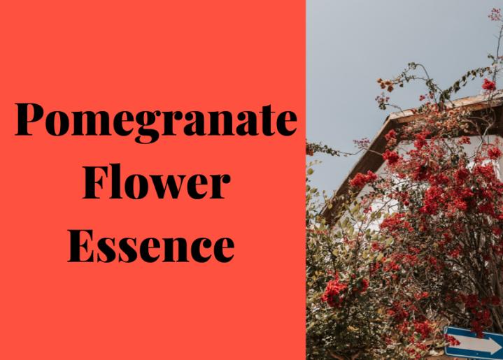 Flower Essences ~Pomegranate
