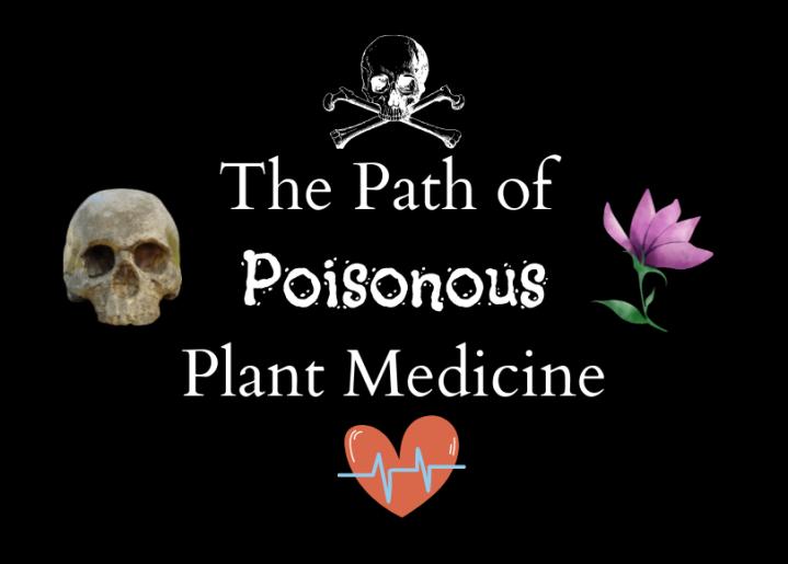 The Path of Poisonous Plant Medicine(Intro)